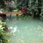 Blue Lagoon near Tham Chang Cave