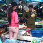 Shopper at Xayaboury Market