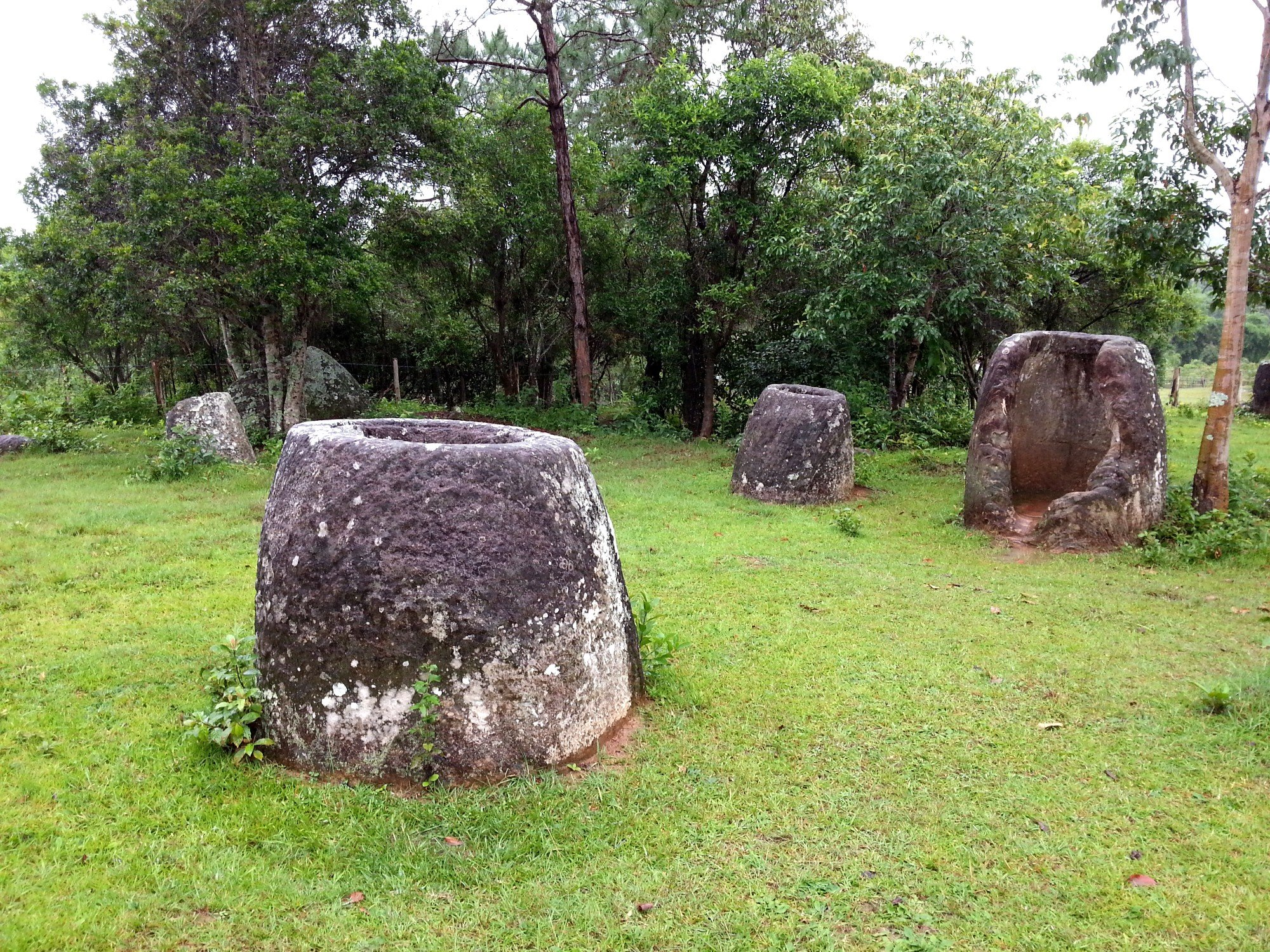 Larger jars at Jar Site 3
